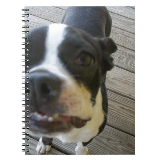 mothers day 2011 046.JPG Notebook