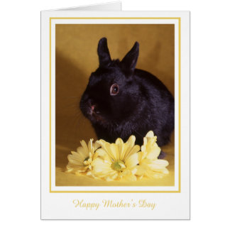 Mother's Day - Bunny and Daisies Greeting Card