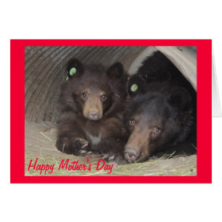 Mother's Day card - mom & cub