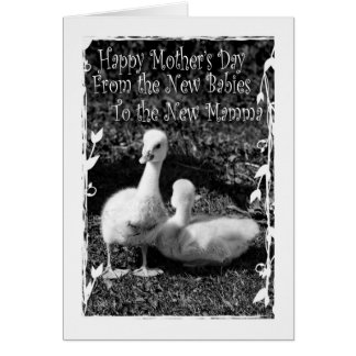 Mother's Day from New Twins Card
