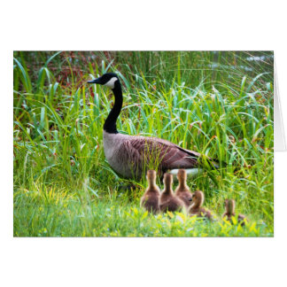 Mother's Day Geese Card