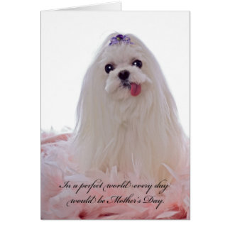 Mother's Day Maltese Dog Greeting Card