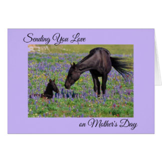 Mother's Day Mare & Foal Floral Pasture Photo Note Card