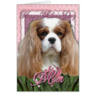 Mothers Day - Pink Tulips - Cavalier - Blenheim Card