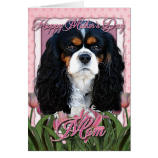Mothers Day - Pink Tulips - Cavalier - Tri-Color Card