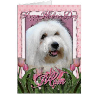 Mothers Day - Pink Tulips - Coton de Tulear Card