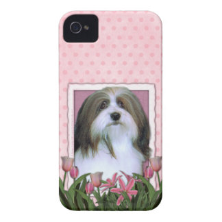 Mothers Day - Pink Tulips - Havanese iPhone 4 Case-Mate Case