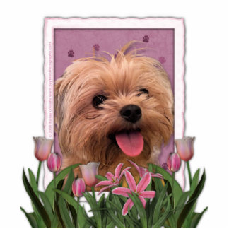 Mothers Day - Pink Tulips - Morkie - Lacey Standing Photo Sculpture