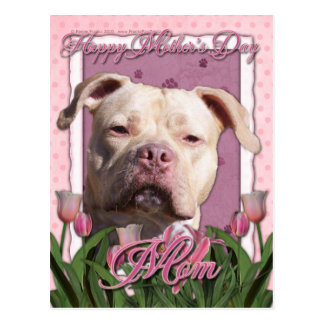Mothers Day - Pink Tulips - Pitbull - Jersey Girl Postcard