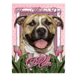 Mothers Day - Pink Tulips - Pitbull - Tigger Postcard