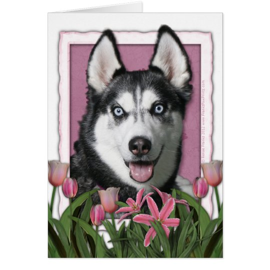 Mothers Day - Pink Tulips - Siberian Husky Card