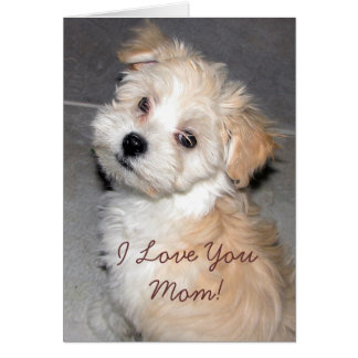 Mother's Day puppy Card