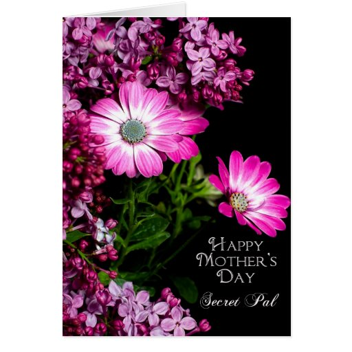 Mother's Day - Secret Pal - Fuchsia Flowers Greeting Cards