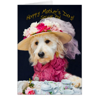 Mother's Day - Secret Pal - Kati's Collection Greeting Card