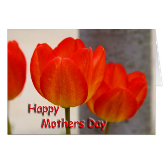 Mothers Day Tulips Card