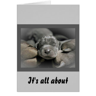 Mother's Paws Greeting Card