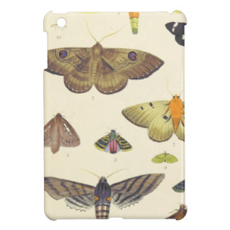 Moths and Butterflies of New Zealand Case For The iPad Mini