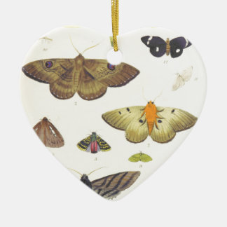 Moths and Butterflies of New Zealand Ceramic Ornament