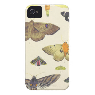 Moths and Butterflies of New Zealand iPhone 4 Case-Mate Cases