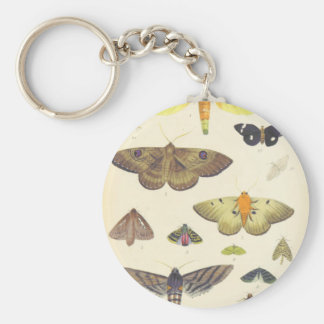 Moths and Butterflies of New Zealand Keychain