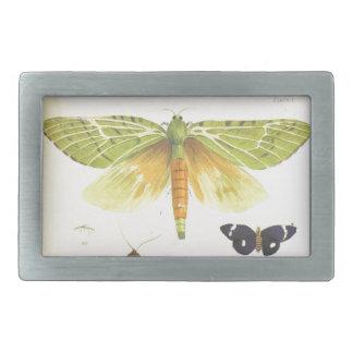 Moths and Butterflies of New Zealand Rectangular Belt Buckles