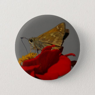Moths and Red Zinnia 2 Inch Round Button
