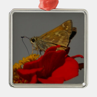 Moths and Red Zinnia Silver-Colored Square Ornament