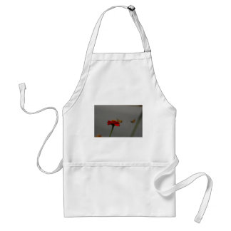Moths and Red Zinnia Standard Apron