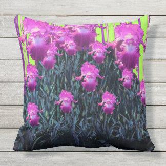 Motif Chartreuse de rayure d'iris pourpre fuchsia Oreiller