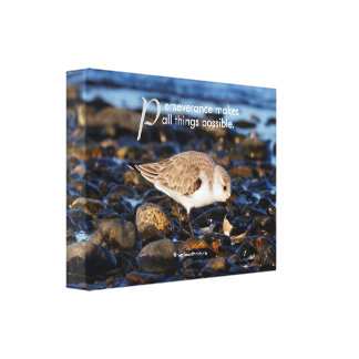 "Motivational ""Perseverance Makes ..."" Sanderling Canvas Print"