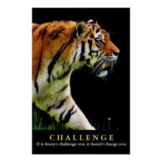 Motivational Tiger Challenge Quote Poster