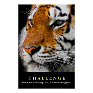 Motivational Tiger Face Challenge Quote Poster
