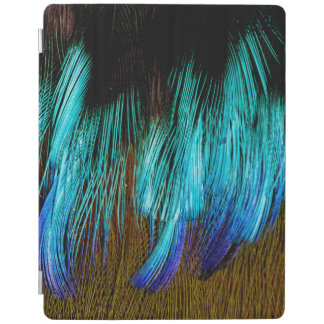 Motmot Feather Abstract iPad Cover