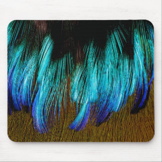 Motmot Feather Abstract Mouse Pad