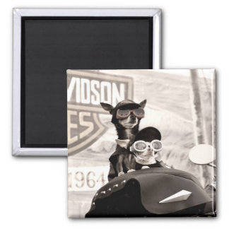 Motorcycle Dogs Magnet