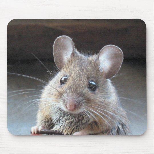 Moue mousepad