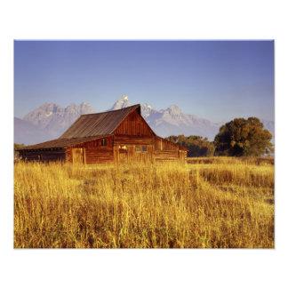 Moulton Barn on Mormon's Row Photographic Print