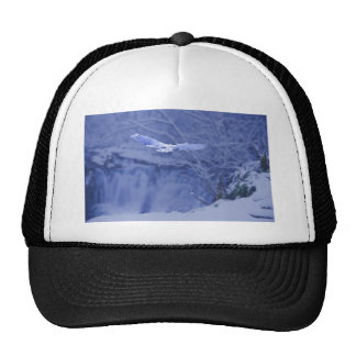 Moulton Falls Washington - Snowy Owl Spirit Trucker Hat