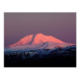 Mount Adams Snowy Peak At Sunset Postcard