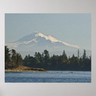 Mount Baker dominates landscape Poster
