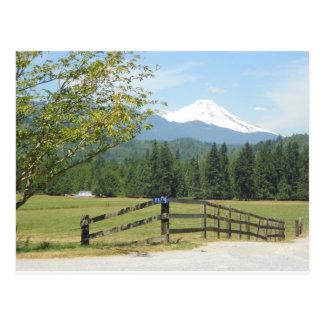 Mount Baker View Postcard