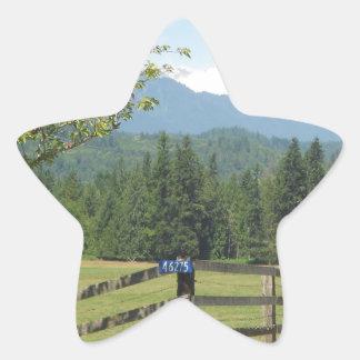 Mount Baker View Star Sticker
