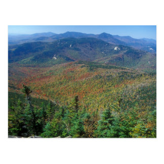 Mount Chocorua foliage view White Mountains Postcard