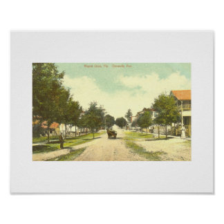 Mount Dora, FL - Downtown - 1907 Poster
