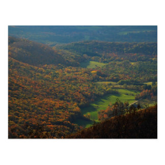 Mount Greylock Foliage View Postcard