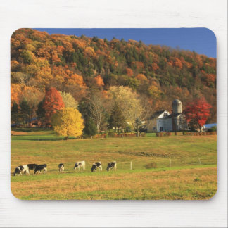 Mount Holyoke Farm in Autumn Mouse Pad