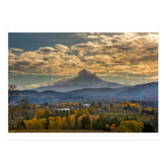 Mount Hood Over Farmland in Hood River in Fall Postcard