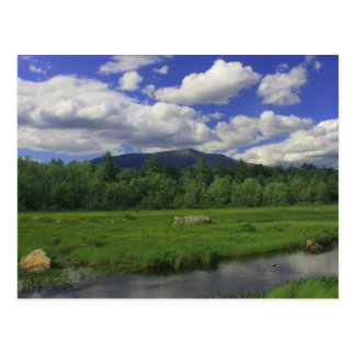Mount Katahdin from Golden Road Postcard