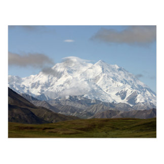 Mount Mckinley in Denali National Park, Alaska Postcard