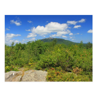 Mount Monadnock from Gap Mountain Postcard